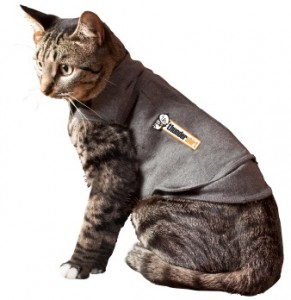 thundershirt-for-cats-main-image