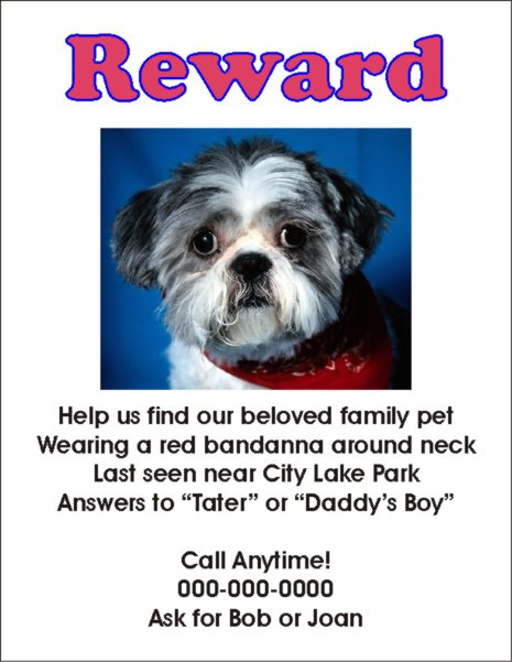 Doc14031984 Lost Dog Poster Template Missing Dog Poster 64 – Found Poster Template